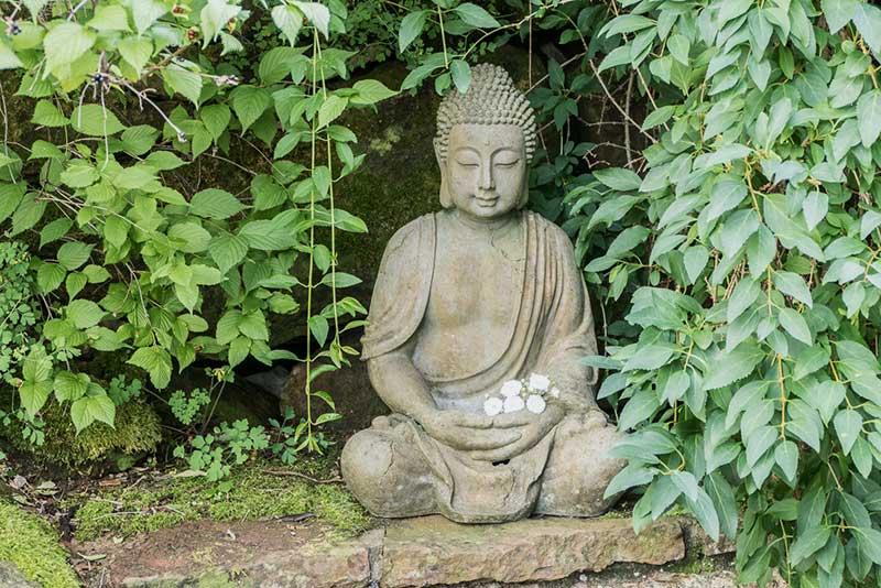 Meditative Fotografie